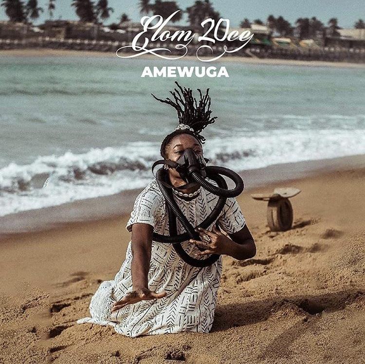 Visuel album Amewuga, Elom 20ce